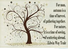 fall-nature-quote.jpg