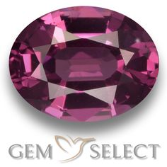 GemSelect features this natural untreated Rhodolite Garnet from Mozambique. This Red Rhodolite Garnet weighs 1.3ct and measures 7.4 x 5.8mm in size. More Oval Facet Rhodolite Garnet is available on gemselect.com #birthstones #healing #jewelrystone #loosegemstones #buygems #gemstonelover #naturalgemstone #coloredgemstones #gemstones #gem #gems #gemselect #sale #shopping #gemshopping #naturalrhodolitegarnet #rhodolitegarnet #redrhodolitegarnet #ovalgem #ovalgems #redgem #red Red Gemstones, Loose Gemstones, Natural Gemstones, Garnet Gemstone, Gemstone Colors, Buy Gems, Natural Red, Gem S, Stone Jewelry