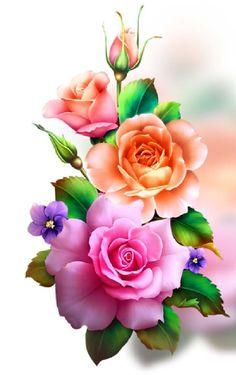 Rose Flower Wallpaper, Flowery Wallpaper, Flower Background Wallpaper, Butterfly Wallpaper, Flower Backgrounds, Beautiful Flower Drawings, Beautiful Flowers Wallpapers, Beautiful Rose Flowers, Beautiful Nature Wallpaper