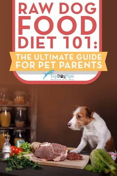 Raw Diet for Dogs 101: The Ultimate Guide. The concept of raw diet for dogs and general raw dog feeding is based on the carnivorous nature of dogs. Our domesticated canines belong to the same family as wolves, foxes and coyotes, and it is part of their natural repertoire to hunt for food. Like their close cousins, dogs have an instinctive desire to capture their prey and consume it raw. #dogs #raw #paleo #barf #rawfeeding