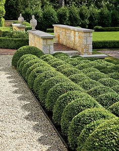 Pea gravel and lawn areas provide visual relief from the formal elements of the garden, such as the precisely formed boxwoods and the limestone walls. Each component adds to the rich composition of textures, an important part of a largely monochromatic landscape.