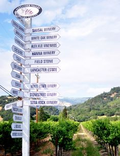 So many wineries; so little time.  It's OK.  Slow down and enjoy.  Alexander Valley, California  (Photo from Centsational Girl blog)