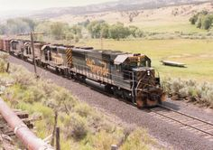 Rio Grande RR - Colorado (Roger Johnson)