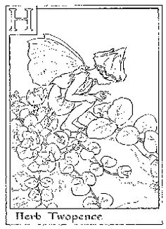 Flower Fairies Coloring Pagesfairies Page