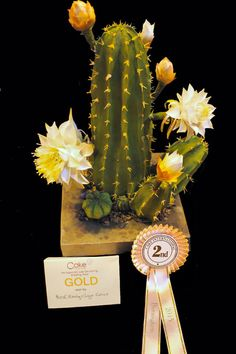 A species of Cactus Peruvianus - Cake by Delicut Cakes - CakesDecor Raspberry Smoothie, Apple Smoothies, Fondant Flowers, Sugar Flowers, Beautiful Cakes, Amazing Cakes, Easter Show, Sugar Beads, Cactus Cake