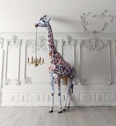 Home Design, Diy Design, Clock Wallpaper, Photo Wallpaper, Inspiration Wall, Interior Inspiration, Giraffe Decor, Restaurant Concept, Animal Decor