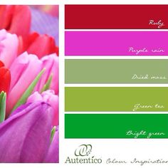 Gorgeous Spring colour Palette from Autentico .... Chalk Paint for Furniture, walls and floors and for Outdoors too !!! All colours available at Pepperwhite Vintage in Exeter