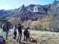 Guided nature hike in the Auvergne mountains (Puy-de-Dôme) - France-Voyage.com