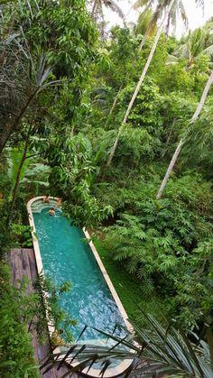 Sinzi in Bali (part I)