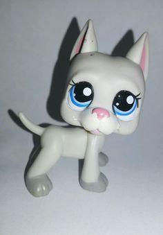 Littlest Pet Shop Dog Great Dane Blue Eyes #1688 Preowned LPS Blemish Flaw in Toys & Hobbies, Preschool Toys & Pretend Play, Littlest Pet Shop | eBay
