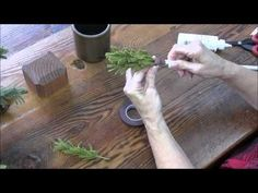 How to Create a Wooly Pine Tree - YouTube