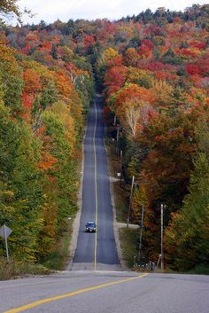 Cannot wait for this! What a drive! http://explorersedge.ca/stories/muskoka-tourisms-fall-driving-tours/