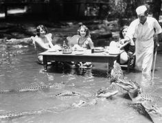 35 Rare Historical Photos - Three women dining with alligators at The California Alligator Farm in Los Angeles. Bizarre Photos, Rare Photos, Old Photos, Vintage Photos, 1920s Photos, Victorian Photos, Antique Photos, Vintage Photographs, History Page