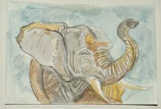 Elephant water colour postcard