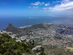 View of the Cape Town coast from the top of the Table Mountains (via thecoconutrace.com)