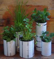 tin can garden - Google Search