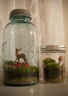 terrariums in a mason jar! #terrarium