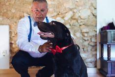 Una boda con perros © SEÑOR Y SEÑORA SMITH Labrador Retriever, Buen Dia, Dogs, Wedding, Majorca, Labrador Retrievers, Chocolate Labradors, Labrador Retriever Dog