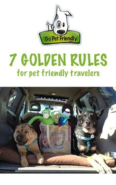 7 Golden Rules For Pet Friendly Travelers