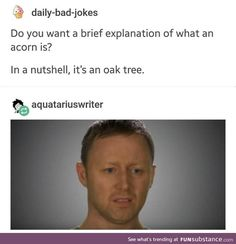 Silly AF Memes Funny Posts) # Face - daily-bad-jokes Do you want a brief explanation of what an acorn is? In a nutshell, it's an oak tree. Funny Posts, The Funny, Funny Stuff, Funny Things, Random Stuff, Clean Funny Memes, Hilarious Jokes, Silly Memes, Pranks