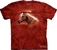 Equestrian English Western Horse Lover Equine Tee Shirt Top Youth Adult Plus Sizes