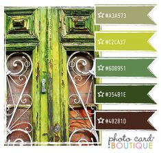 Gorgeous palette of greens & love the old doors! #color