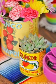 Succulents and food cans! Cinco De Mayo Mexican Fiesta by Kara Allen | Kara's Party Ideas | KarasPartyIdeas.com favors, decor, DIY ideas, recipes and more!