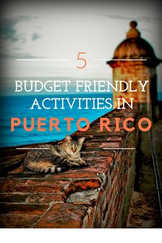 These are our top 5 free or inexpensive things to do in Puerto Rico. Wander around Old San Juan, take in nature and explore the island by jeep!