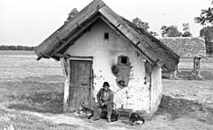 A gulyás kunyhója. Vintage Pictures, Old Pictures, Budapest, Black White Photos, Black And White, Bee Art, Historical Photos, Cottages, The Past