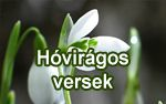 Tavaszi szél vizet áraszt... | Hóvirágos versek
