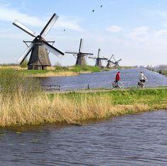 The famous Windmills of Kinderdijk, 16km from Rotterdam.
