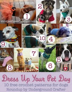 Dress Up Your Pet Day 2015, free crochet patterns for pets, roundup on Underground Crafter