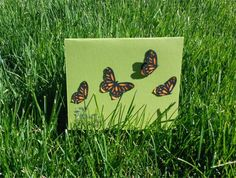 Flutter By Greeting Card - Spring, Butterfly, Blank, Birthday, Congratulations, Love, Mother's day, Any Occasion