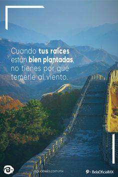 🍃 Cuando tus raíces están bien plantadas, no tienes por qué temerle al viento 🍃 🙏 PEDIDOS 📞01 249 426 1661 📞01 249 422 4217 📢 Llegamos a: 💧Barrio de San Juan (Tecamachalco) 💧Tecolco 💧Tecamachalco (Puebla) 💧La Laguna 🚩 PROXIMAMENTE en San Salvador Huixcolotla #AguaBela #ViveHoy #AguaEmbotellada #AguaPurificada #AguaPurificadaCristal #AguaPurificada #Agua #AguaFresca #Aguamineral #Pureza #Saludable #Salud #HidrataTuCuerpo #Expertos  #Water #Healty #Promociones #Saludable Peaceful Life, Facebook Sign Up, Positive Thoughts, Cute Wallpapers, Abdul Kalam, True Stories, Namaste, Sarcasm, Sentences