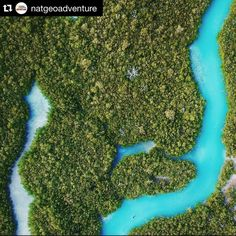 #Repost @natgeoadventure with @repostapp.  Photo by @devlin_gandy // From the smallest aspect to the largest the Earth is a remarkably interwoven biological system. Overwhelmingly vast sometimes you just need a higher perspective to take it in. Here a diver explores a channel formed by mangroves in the Caribbean #natgeoearthday  #earth #sustainability #education #awareness #sustainabledesign #quote #quoteofthedays #quotes #lifequotes #quotesaboutlove #itmatters #themoreyouknow #sustainable…