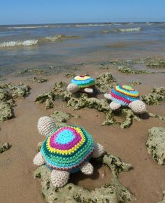 Turtle Amigurumi Crochet Toy *I love that someone took the time to place them in a setting like this for the picture*