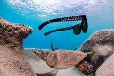 Bomber Eyewear sells Polarized Floating Sunglasses, Safety Sunglasses, and much more. See why everyone is buying Sunglasses from Bomber Eyewear. Buy Sunglasses, Sports Glasses, Paddle Boarding, Diving, Eyewear, Surfing, Paradise, Ocean, Shades