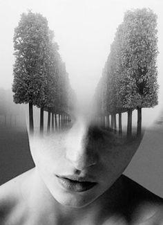 Art by Antonio Mora - VERSAILLES