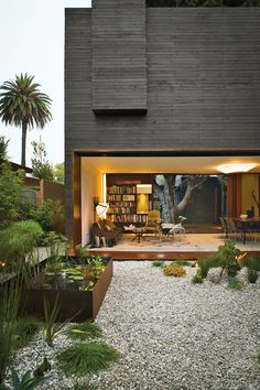 Palm trees, cubic house, glass window, library, garden