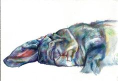 Gray Blue Bunny Rabbit Sleeping Colourful Watercolor by verf