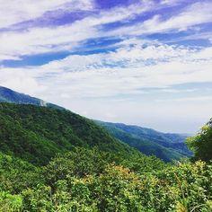 【dayuan_zono17】さんのInstagramをピンしています。 《🌲forest and sky🌲in Sado . . . . . . . #forest #sky #mountain #beautifulpeople #森林 #空 #山 #삼림 #하늘 #산 #아름다운 #중3 #02년생 #01년생 #f4f #佐渡》