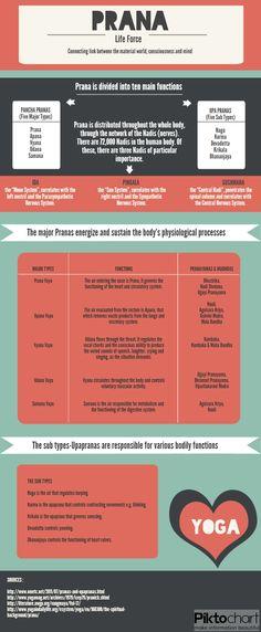 the five vayus / pranas