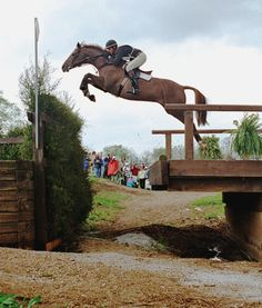 61 Best Cross Country Jumping Images In 2014 Horses