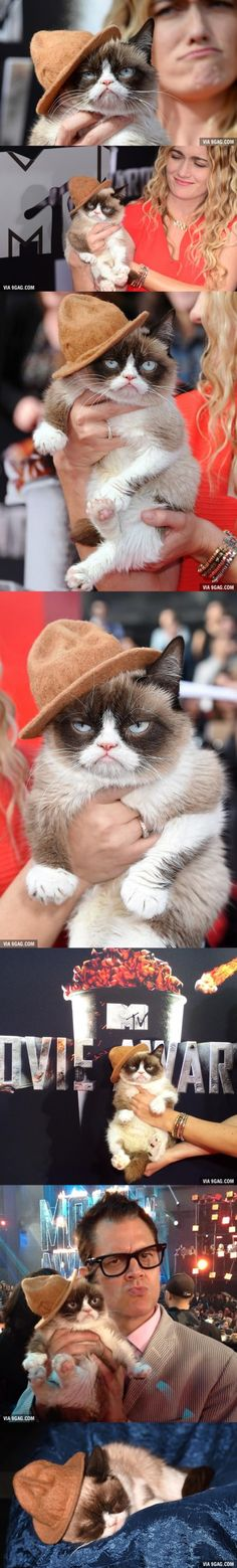Grumpy Cat Stole Pharrell's Hat And Wins Best Dressed At MTV Movie Awards
