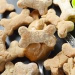 3 ingredient Peanut Butter Dog Treats - Simple, all natural, and dog approved. You& need: peanut butter, eggs, and flour. Homemade dog treats for your dog Bacon Dog Treats, Peanut Butter Dog Treats, Pumpkin Dog Treats, Puppy Treats, Homemade Dog Treats, Healthy Dog Treats, Dog Treat Recipes, Cat Recipes, Dog Food Recipes