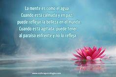 #mente #pensamiento #frase #imagen