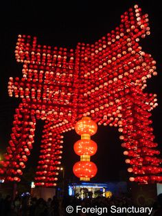 A Chinese Character Display at the Taiwan Lantern Festival ------> Lights, Camera, Lantern: The Taiwan Lantern Festival [A Blog Post - http://foreignsanctuary.com/2014/01/10/lights-camera-lantern-the-taiwan-lantern-festival/]