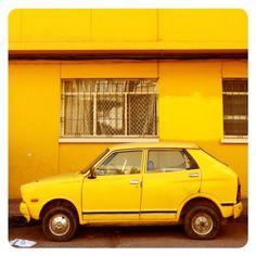 yellow on yellow.
