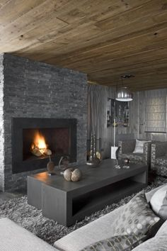 GREY interior (+wood) and fireplace