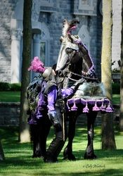 Starry Knight Friesians located in Algoma, Wisconsin (Photography by: Cally Matherly) In costume Most Beautiful Horses, All The Pretty Horses, Horse Girl, Horse Love, Medieval Horse, Medieval Weapons, Horse Facts, Horse Costumes, Types Of Horses